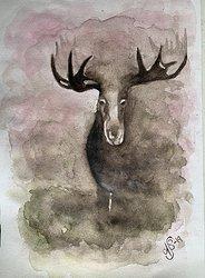 """""""Misty Moose"""""""
