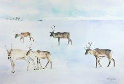 Njut av vintern av Svitlana Vasylets