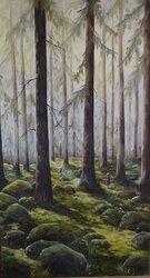 I skogen efter regn