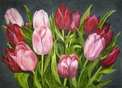 Tulpaner i rött och rosa