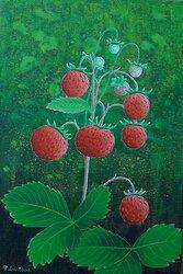 Smultron / Wild strawberry