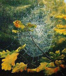 Höst i spindelns nät