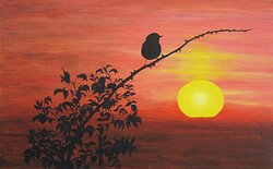 Fågeln och solen