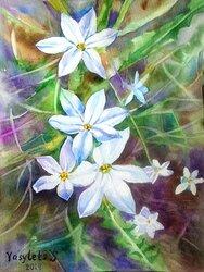 Blommor 2
