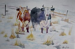 Kor i februari