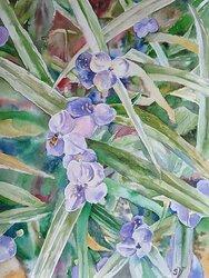 Blommor 6