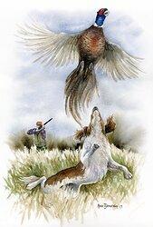 Jakt med spaniel