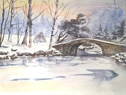 Den vackra vintern