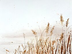 River Reed