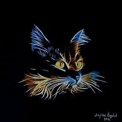 Katt i neon