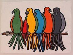 """""""Parrots"""""""