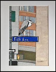 Lost at Fifth avenue