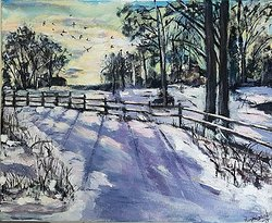 Vinter i Salsta