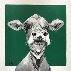 Cow 189