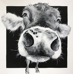 COW 198