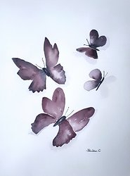 Fjärilsdans