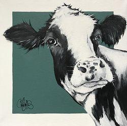 Cow 202