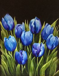 Blå tulpaner