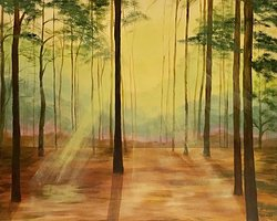 Morning sunshines, in the forest