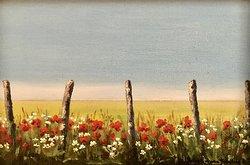 Vallmo vid staketet