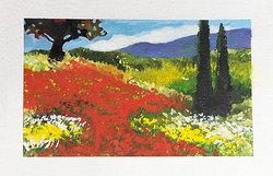 Vallmofält i Provence