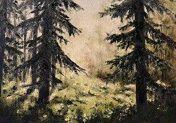 Ljus i skogen