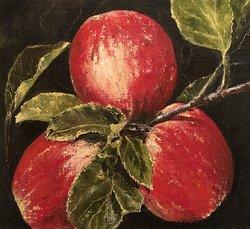 Äpplen färdiga