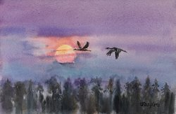 I solnedgången