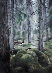 Skogen av Sofia Ohlsén