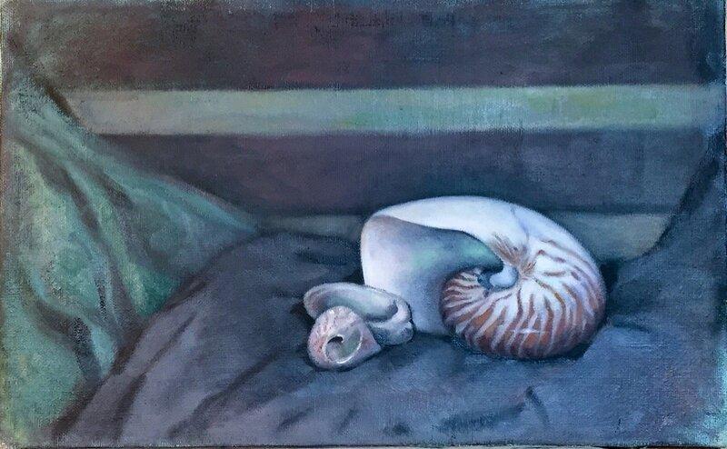 Stilleben med Nautilus