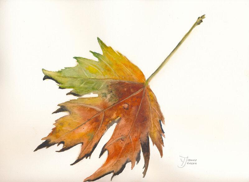 Akvarell Lönnlöv, Yvonne Jensen