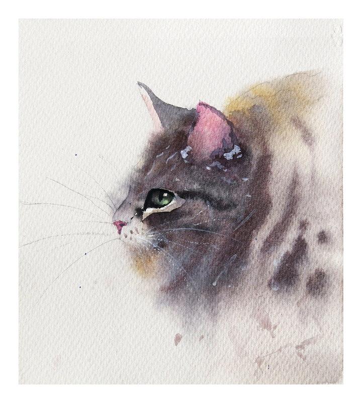 Akvarell Kattporträtt, Daniel Luther
