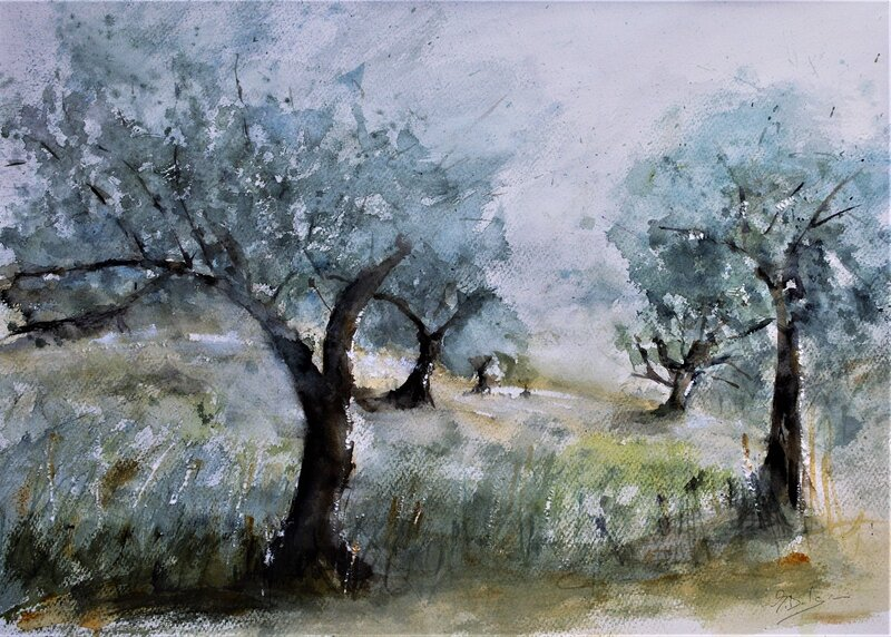 Akvarell Morgon i olivlunden-Skiathos, Göran Dalgren