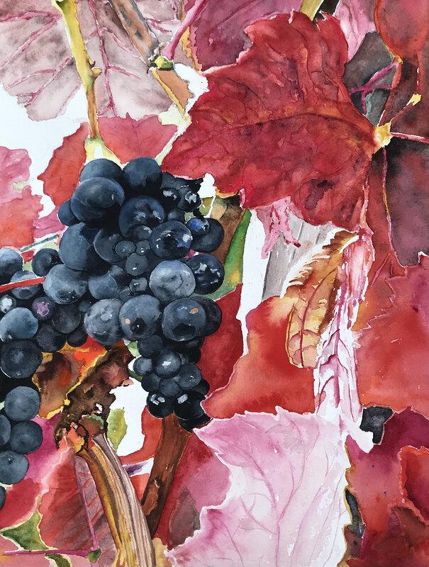Akvarell Vindruvor, Ewa Helzen