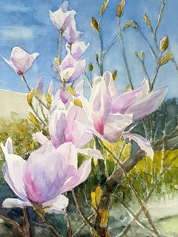 Akvarell Magnoliatid, Bo Wiktorsson