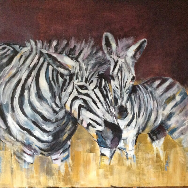 Zebra känslor