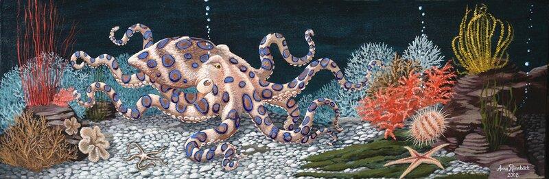 Blåringad bläckfisk