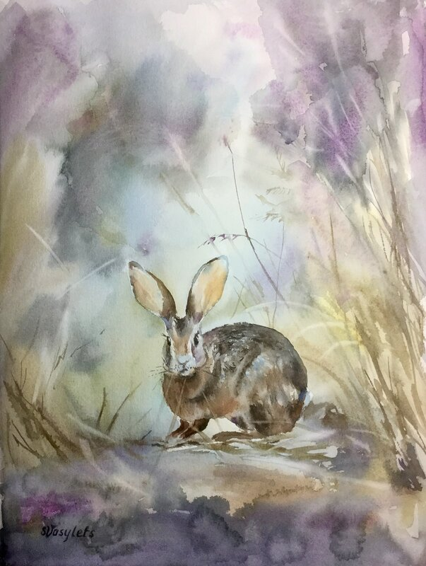Hare med stora öron