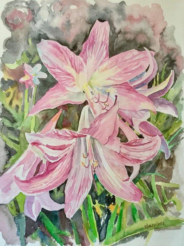 Blommor från Azorerna